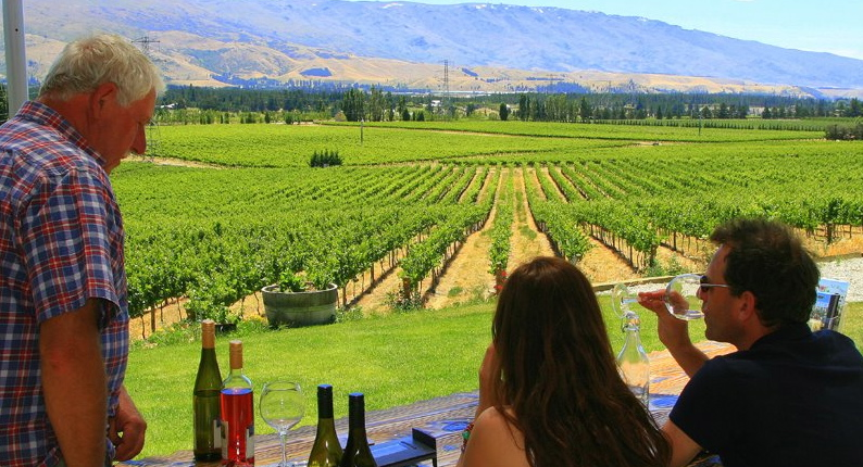 Bannock Brae Estate vineyard visited during Wanaka Wine Tours a Discover Wanaka tour operator
