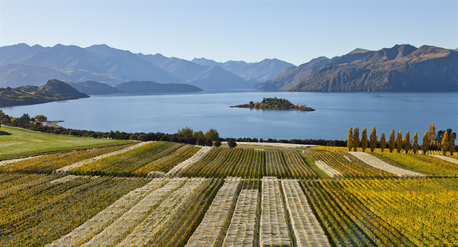 Rippon vineyard in Wanaka Central Otago - wine tasting tours with ...
