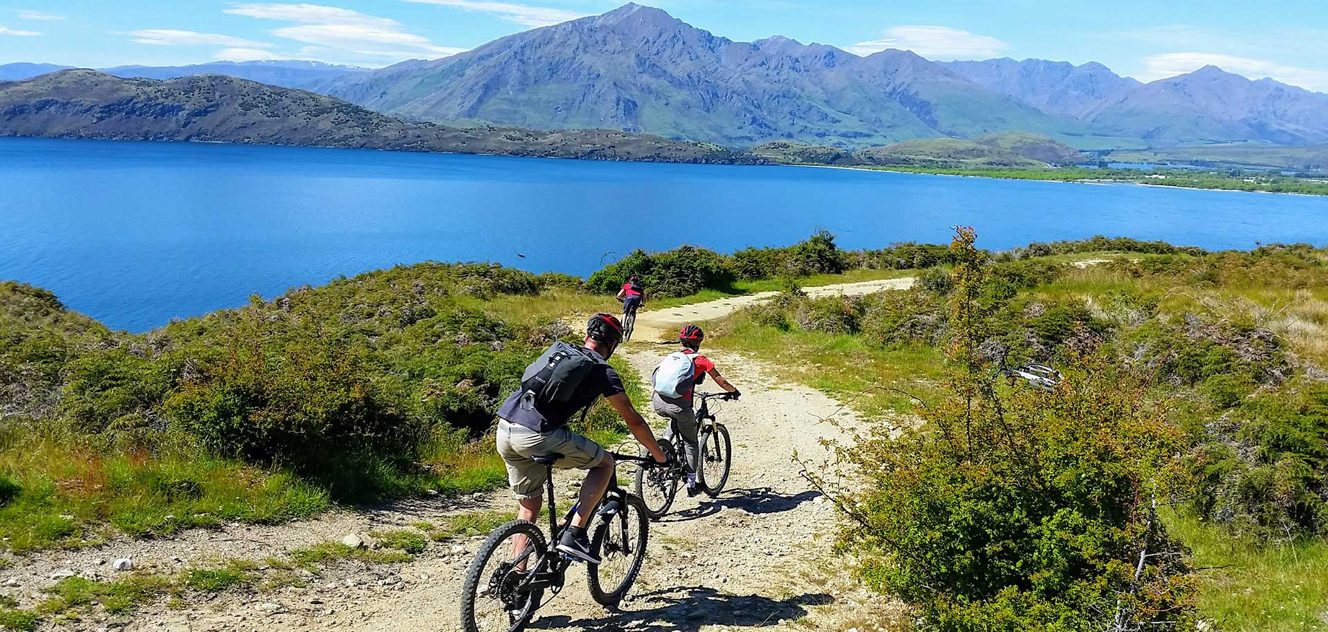 Boat and Bike Tour | Discover Wanaka | Guided Tours