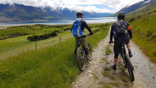 Farm Bike Tour | Discover Wanaka | Guided Tours