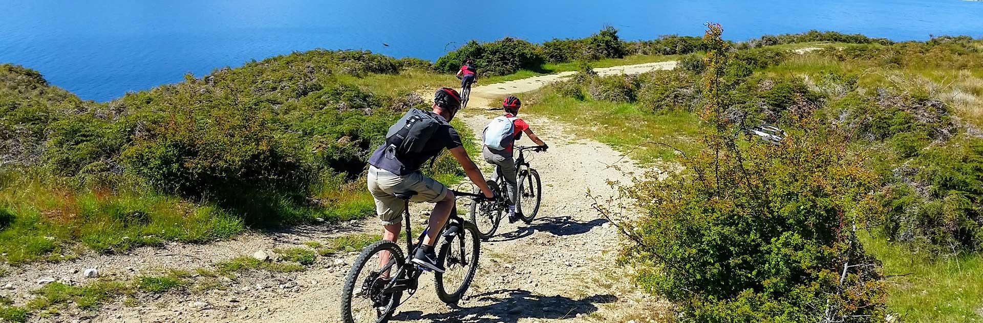 Bike + Boat Tour | Discover Wanaka | Guided Tours