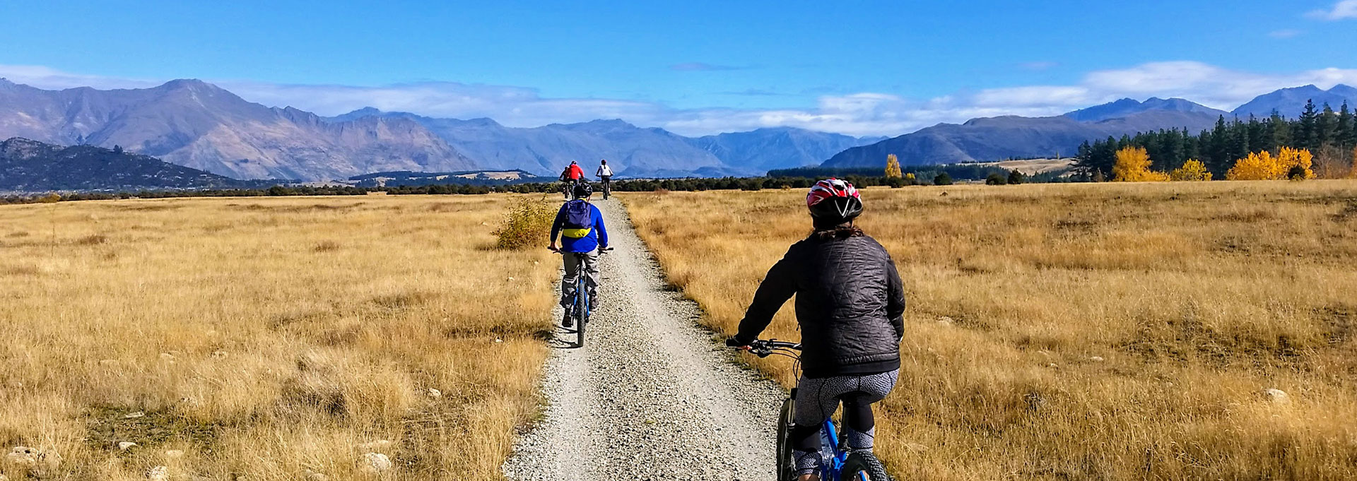 Easy Bike Tour| Guided Tours | Discover Wanaka