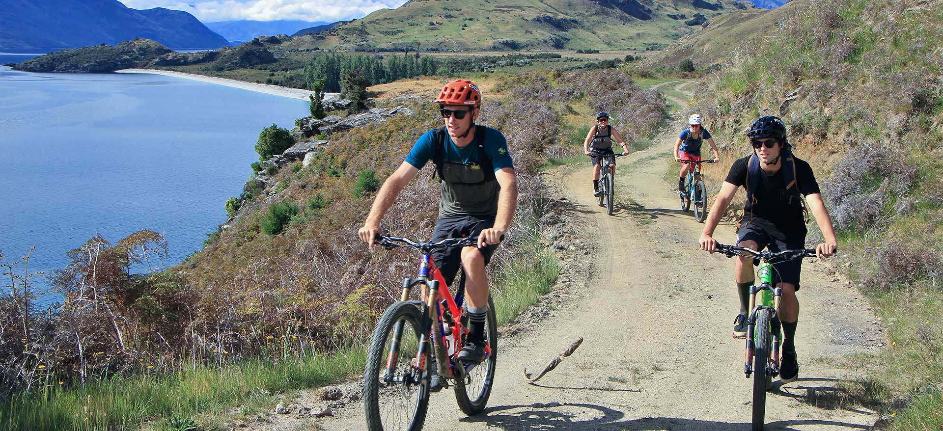 Bike Tour | Discover Wanaka | Guided Tours