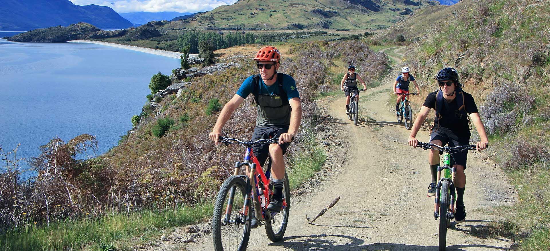 Bike Tour | Discover Wanaka | Guided Tours